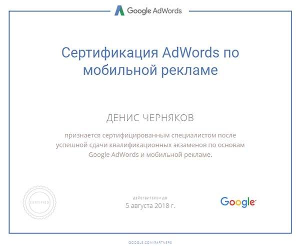 fireshot-capture-80-google-partners-certification_-https___www.google.ru_partners_-min
